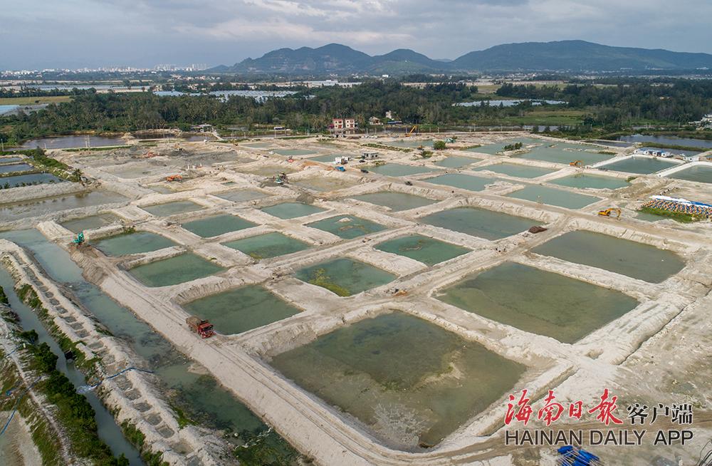 陵水水产南繁苗种项目预计2021年底建成投产